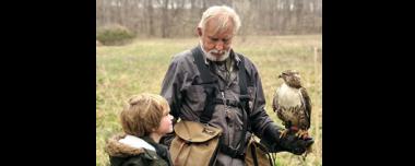 Falconry In Kentucky